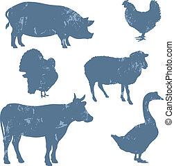 animaux ferme, vecteur, silhouettes