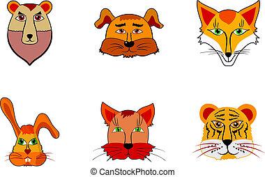 animaux, illustration