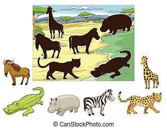 animaux, leur, ombres, jeu, allumette, pédagogique