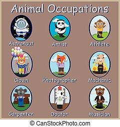 animaux, métiers