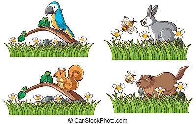 animaux, quatre, jardin, types