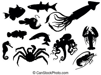 animaux, silhouettes, mer, -, vecteur