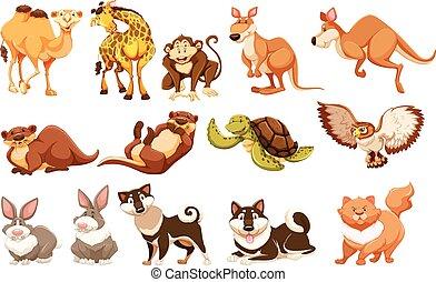 animaux, types, ensemble, différent