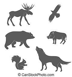 animaux, vecteur, ensemble, forêt