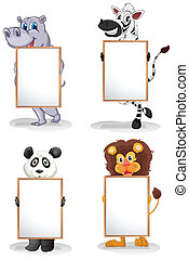 animaux, whiteboards, différent, vide, quatre
