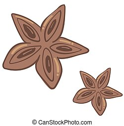 Anise aromatic spice for cooking and baking vector - ...