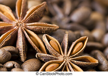 anise seed on coffee beans