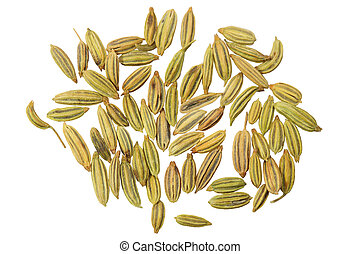 Anise Seeds - Dried anise seeds aniseed isolated over white...