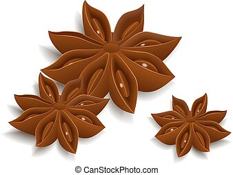 Anise star - Star anise isolated on white background. Vector...