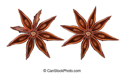 Anise stars on white background