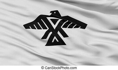 Anishinabe Indian Flag Closeup Seamless Loop - Anishinabe...