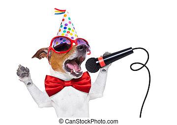 aniversário, cão, feliz, cantando