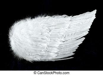 anjo, isolado, lado, pretas, asas, vista