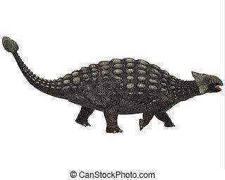ankylosaurus, branco
