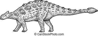 Ankylosaurus illustration, drawing, engraving, ink, line art, vector