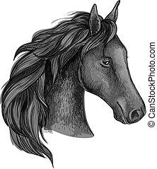 anmutig, pferd, schwarz, porträt