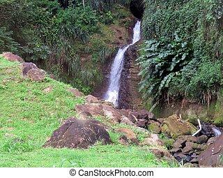 Annandale waterfall on the Caribbean island of Granada