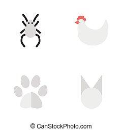 annat, vektor, katt, tarantel, fot, foot., icons., synonyms, elementara, sätta, tupp, spindel, vild, enkel, illustration