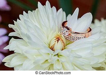 anneau diamant, saint-valentin, amour, fleur