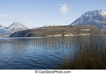 Lake of Annecy with poles and reeds and snowed mountains Les dents de la Forclaz