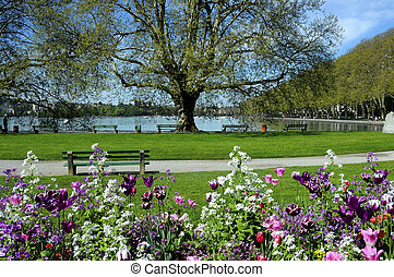 Annecy lake, flowers and city, Savoy, France - Annecy lake...