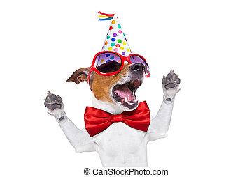 anniversaire, chien, heureux, chant