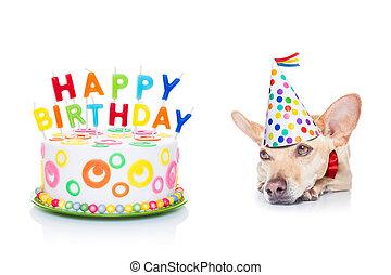 anniversaire, chien, heureux