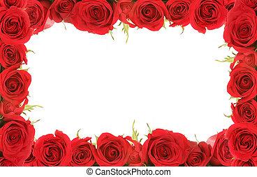 anniversaire, valentin, roses, encadré, ou, rouges