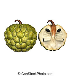 Annona 3D - Annona is a genus of flowering plants in the...