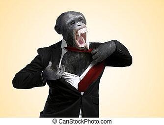 Annoyed Monkey Shouting On Yellow Background
