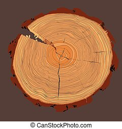 Annual tree growth rings with brown tonesdrawing of the cross-section of a tree trunk