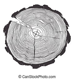 Annual tree growth rings with grayscale drawing of the cross-section of a tree trunk