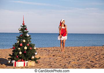 ano novo, árvore natal, recurso praia, mar, menina