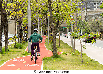 Cyclist is cycling on the cycle track. Tree-lined avenue and no car traffic.