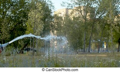 Anonymous man watering a lawn in the park