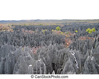 Another large view on the top - Tsingy of Bemaraha Park - Madagascar.