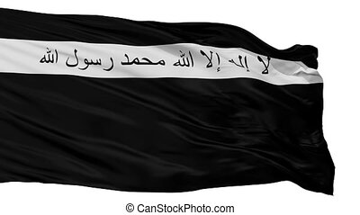 Ansar Al Islam Flag Isolated Seamless Loop - Ansar Al Islam ...