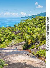 anse, principal, natureza, rastro, ilha mahe, seychelles, oceano índico, áfrica oriental