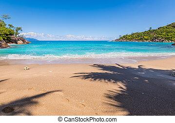 anse, principal, praia, ilha mahe, seychelles