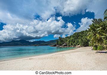 anse, soleil, praia tropical, ilha mahe, seychelles