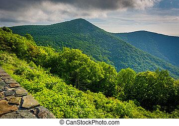 ansicht, von, hawksbill, berg, von, halbmond, gestein, übersehen, auf, silhouettentrieb, in, shenandoah nationalpark, virginia.