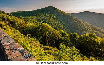 ansicht, von, hawksbill, berg, von, silhouettentrieb, in, shenandoah nationalpark, virginia.