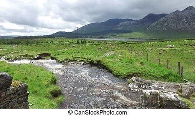 ansicht, zu, fluß, und, hügel, an, connemara, in, irland, 38