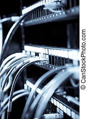 anslutning, nätverk