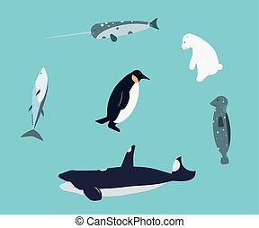 antártica, animais