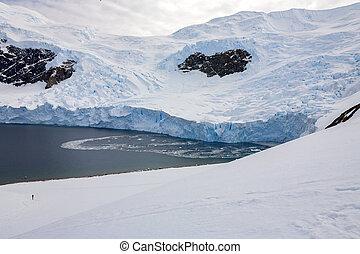 antártica, península, -, neko, antárctico, geleira, porto