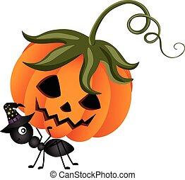 Ant Carrying a Halloween Pumpkin