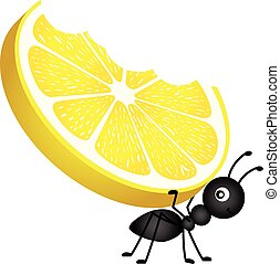 Ant carrying a lemon.eps