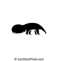 ant-eater, 2