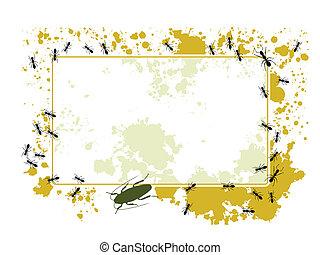 Ant frame